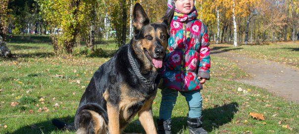 Grote hond, klein meisje
